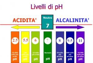 pH-1-300x203