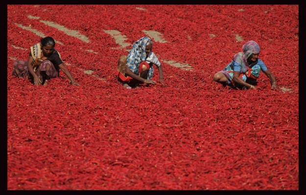 peperoncini-rossi